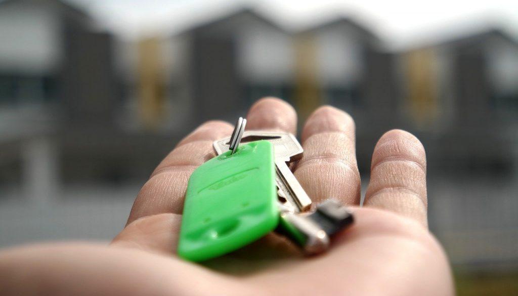 Loi Pinel locataire sans avis imposition